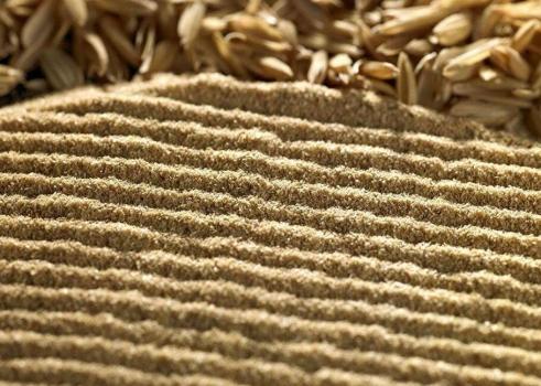 玉米率先领涨 年前豆粕仍存阶段走高希望