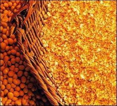 高豆粕比例和超剂量植酸酶对商业饲养条件下断奶仔猪生长性能的影响