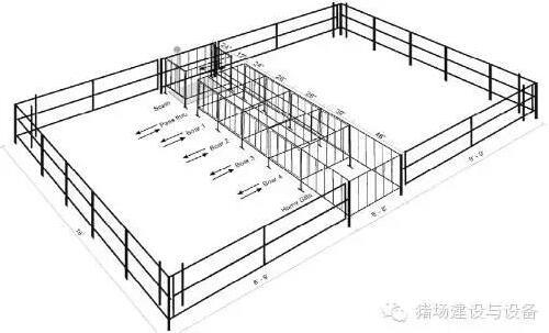 技术控 | 设计有效的公猪诱情系统