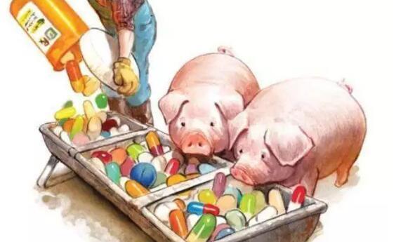后抗生素时代的抗生素替代策略
