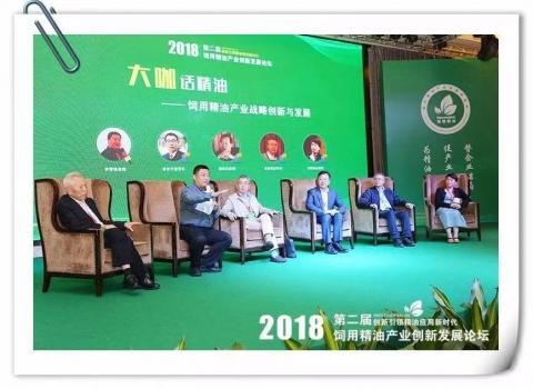 大咖话精油——广州精油会议互动论坛嘉宾精彩观点呈现