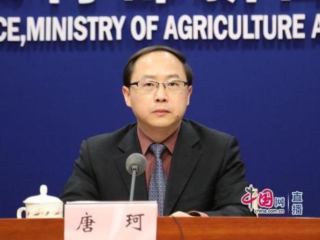 农业农村部:2020年我国生猪产能有望逐步恢复