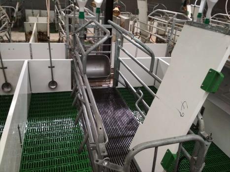 猪场常用消毒剂的选择及科学应用