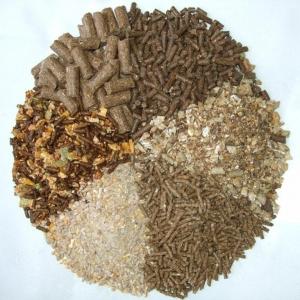 彩立方平台官网质量是影响采食量的主要因素