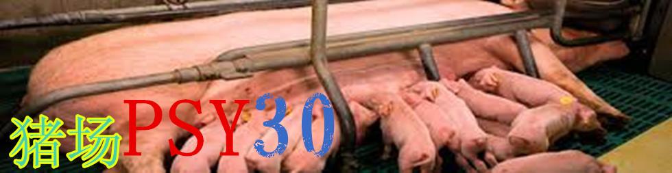 如何实现猪场PSY30目标?