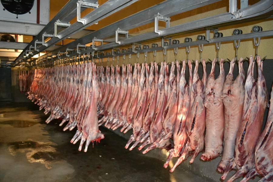 震惊!湖南公布86个屠宰场污染情况:非瘟核酸阳性率12.8%。