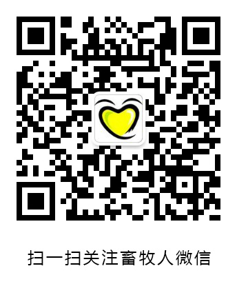 沙龙国际手机版微信公众号
