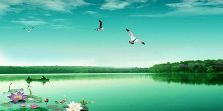 湖南省《关于进一步加强活禽交易市场监管的通知》